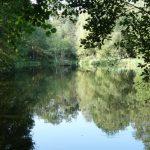normandy pond