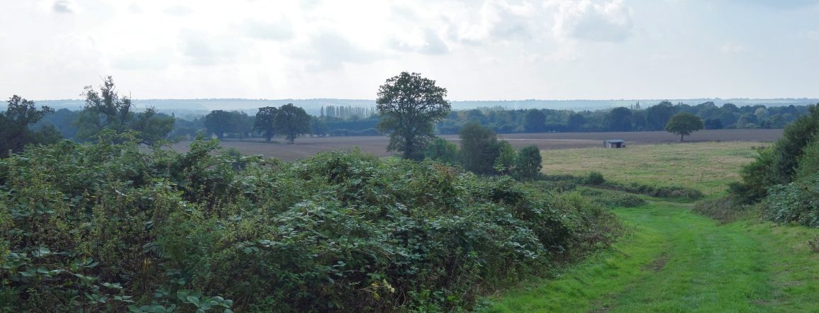view from above hunts hill
